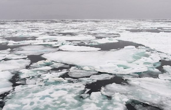 Arctic's 'last ice area' is breaking up for the first time on record