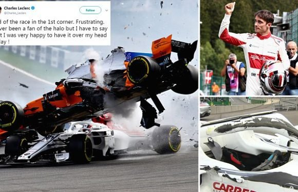 Moment safety device saved a Formula One driver from near-decapitation