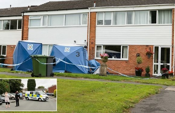 Double murder probe after mother and daughter are stabbed to death