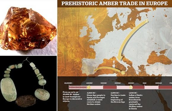 Prehistoric humans traded in AMBER, archaeologists reveal