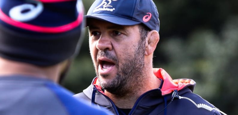 Sack Cheika? A quicker fix for the Wallabies can be found on the field