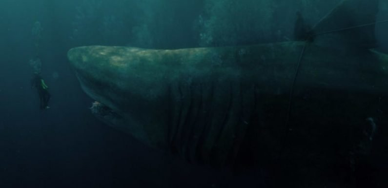 The Meg review: No love at first bite for dreary monster shark tale