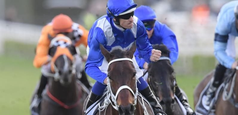 From Black Caviar to Winx, with love