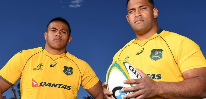 Wallabies props hope to continue extraordinary family legacy