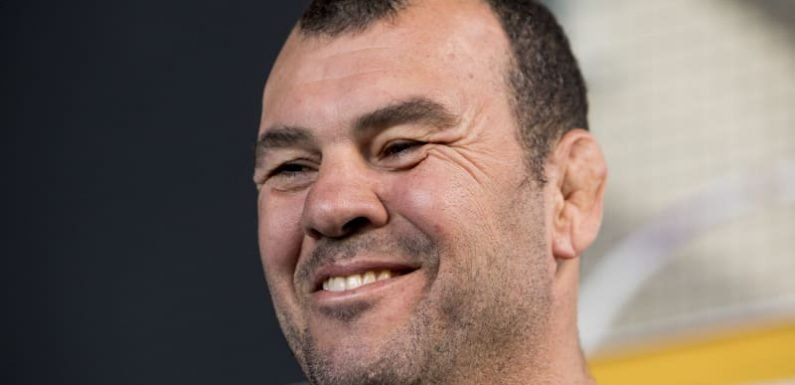 Nice try, Steve: Cheika not buying Bledisloe 'favourites' tag