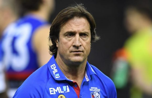 Priority picks for Blues and Suns would 'disappoint' Luke Beveridge