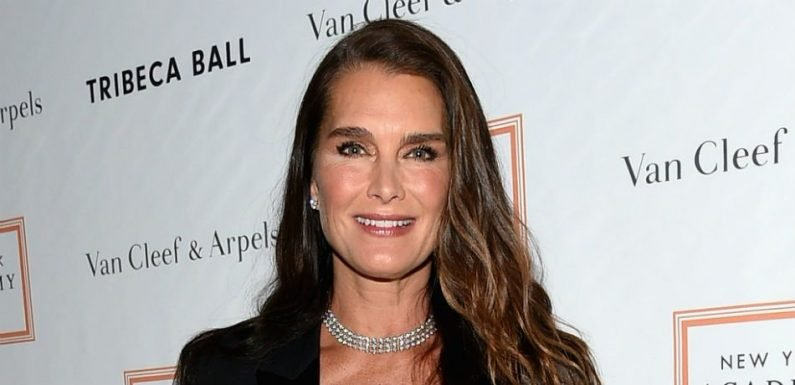 Brooke Shields Says She Would 'Rather Get Naked' Than Do This