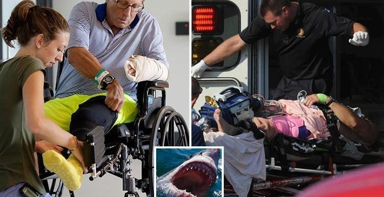 Cape Cod shark attack victim, 61, reveals he escaped by punching the beast in the gills after it savaged his leg