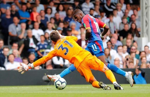 Fulham 0 Crystal Palace 2: Goals from Jeffrey Schlupp and Wilfried Zaha ruin Cottagers' first game back in Premier League