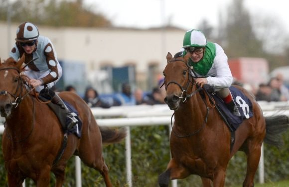 Horse racing tips and best bets for Wednesday, August 22