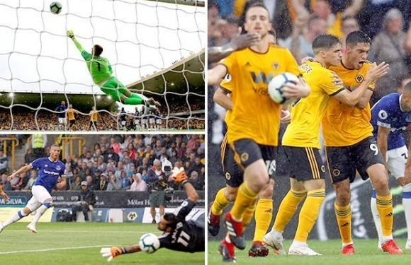 Wolves 2 Everton 2: Raul Jimenez nets late equaliser to cancel out Richarlison's double at Molineux