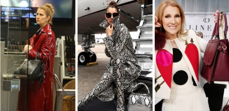 20 Lavish Things Celine Dion Spends Her Millions On