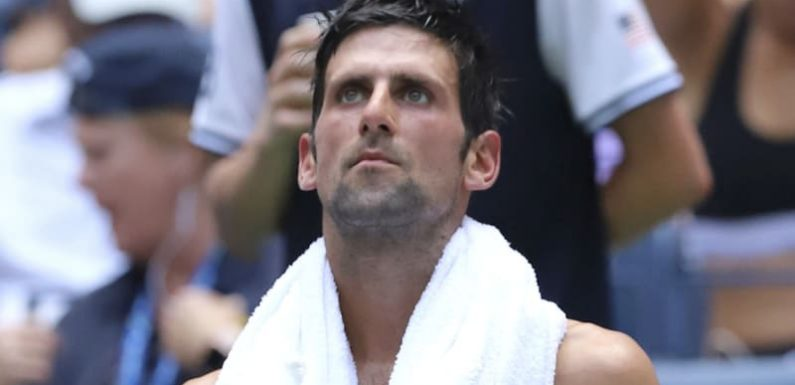 Djokovic steams his way to US Open win