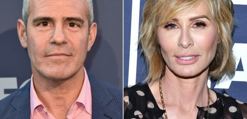 Carole Radziwill Denies Being Fired from RHONY for Yelling at Andy Cohen During the Reunion