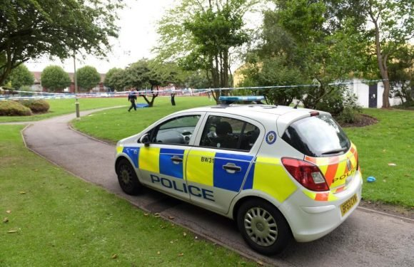 Birmingham stabbing – Two boys, aged 13 and 14, arrested on suspicion of attempted murder after teens knifed