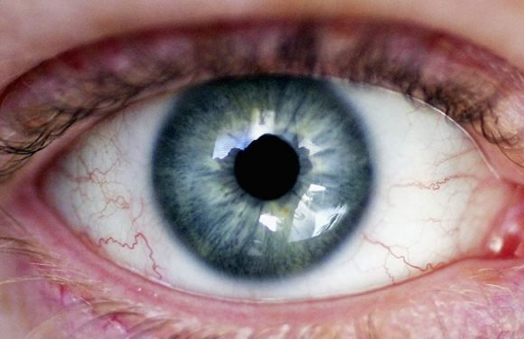 Scientists Reverse Congenital Blindness in Mice