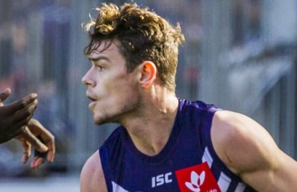 Lions chase contracted Dockers star Lachie Neale