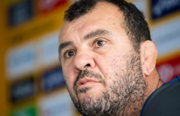 Tension rife between Cheika and Hansen in build-up to Bledisloe clash