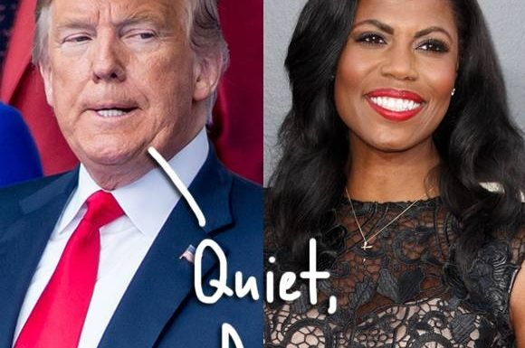 Donald Trump Attacks 'Dog' Omarosa Manigault-Newman For Claiming He's Racist & Uses The N-Word