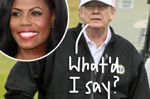 Donald Trump Flips On Twitter After 'Wacky' Omarosa Manigault-Newman Releases Secret Audio Tape Of Him!