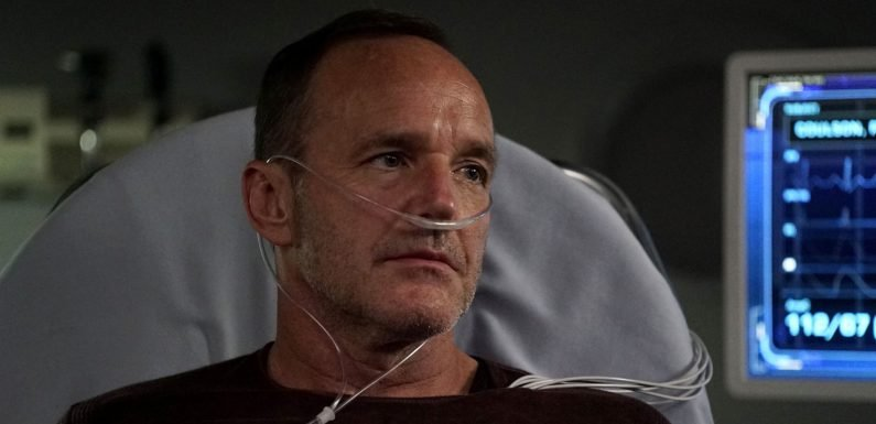 Did Agents of SHIELD star just reveal season 6 release date?