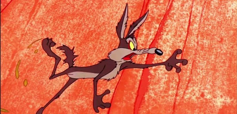 Looney Tunes' 'Super Genius' Wile E Coyote is getting his own movie