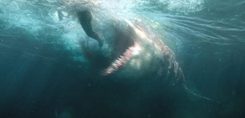 'The Meg' to Devour Box Office With $40 Million Debut