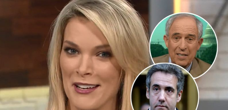 Megyn Kelly's Audience LOLs So Hard at Michael Cohen's Attorney for Plugging GoFundMe Campaign on 'Today'