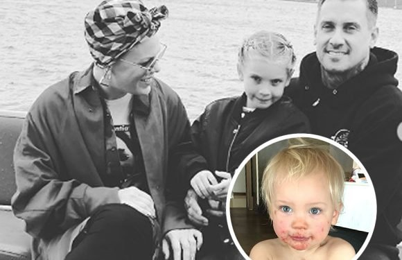Pink's Family Is Sick AGAIN In The Middle Of Her 'Beautiful Trauma' World Tour — Ugh!