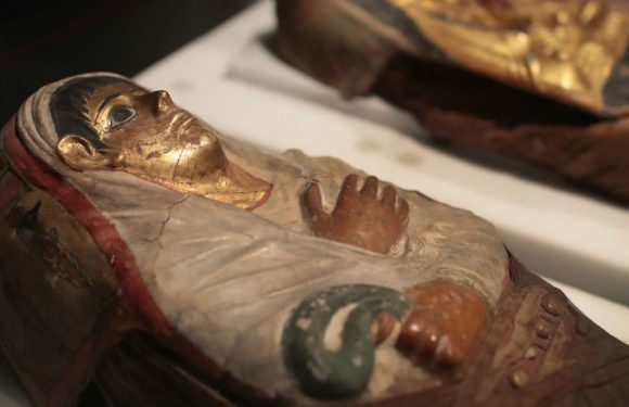 A Student Has Made The Astonishing Discovery Of Ancient Writing Lost Over Time On An Egyptian Mummy Case