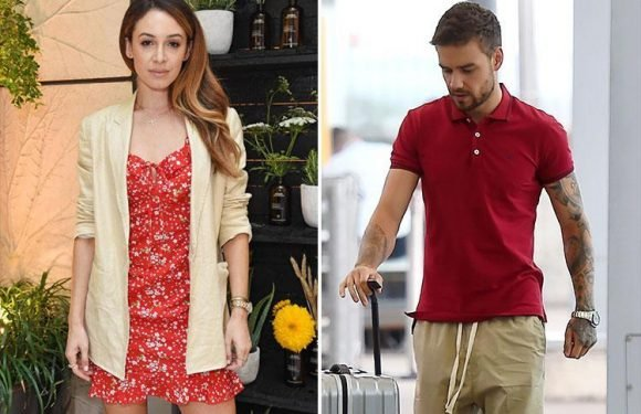 Liam Payne's ex Danielle Peazer has quit social media after she hints the pair are back in touch