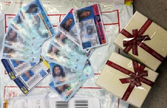 Nearly 500 fake IDs stopped by Customs and Border Patrol officers, agency says