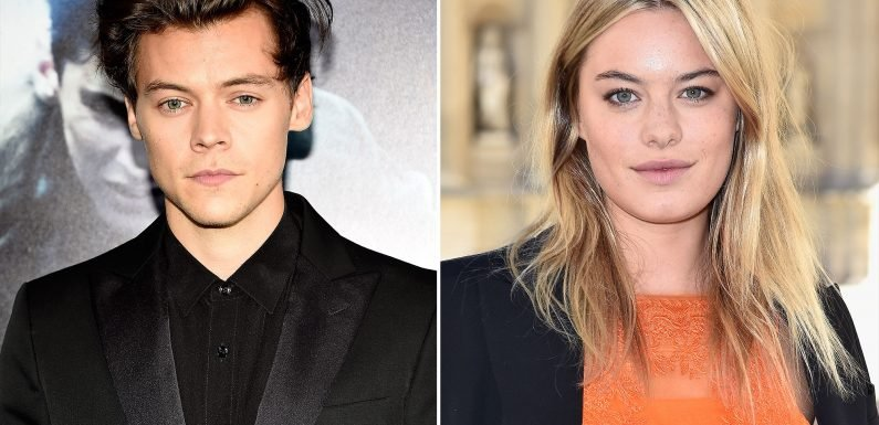 Harry Styles and Model Camille Rowe Split After One Year Together