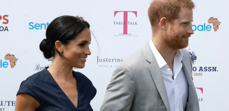 Prince Harry Thinks There's 'Too Much Hysteria' Around Meghan Markle, Wants To Keep Media Away