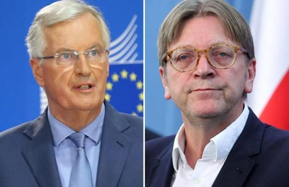 Top MEP calls for Michel Barnier and Guy Verhofstadt to be sacked and replaced with negotiators friendlier to Britain
