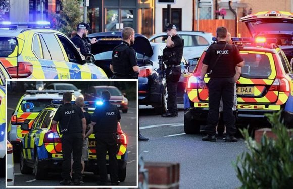 Moment armed police swoop on car and arrest two men after teenager 'threatened with axe and hammer'