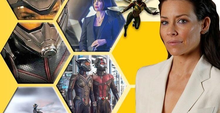 Marvel superhero Evangeline Lilly on why she refused to 'fight like a dude' as being feminine gives the Wasp her sting
