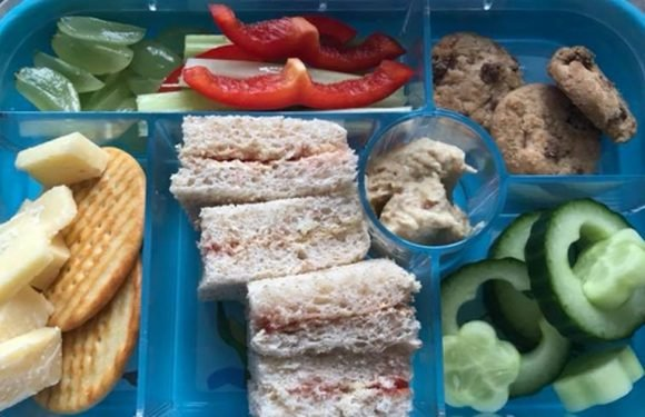Mum bewildered as school sends back child's lunch box for being 'too unhealthy'