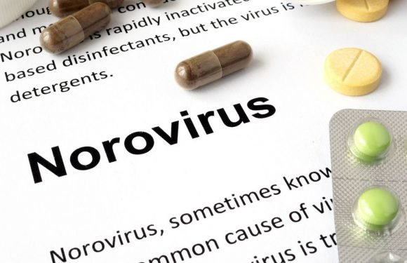 Norovirus outbreak at Exeter schools as 45 pupils sent home with vomiting bug