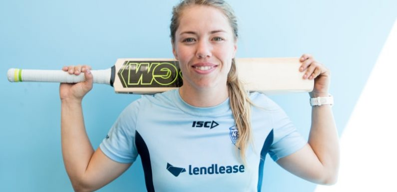 How a gap year in the Netherlands led to a cricket career