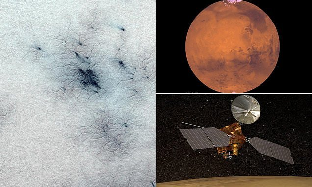'Spiders from Mars' spotted in image of troughs across the red planet