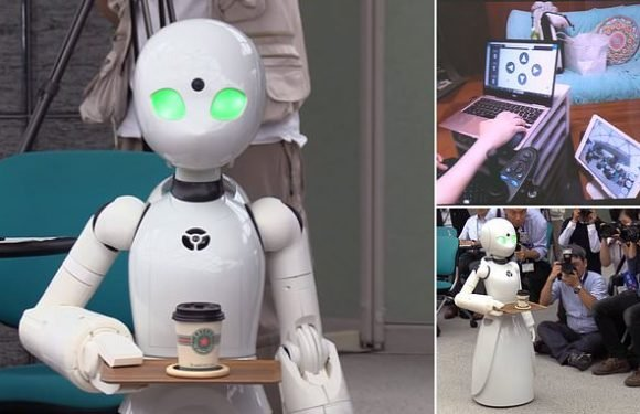 Tokyo cafe to use robot waiters remotely controlled by disabled people