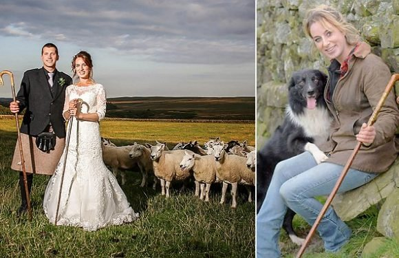 How shepherdess who landed dream job used flock to round up a husband
