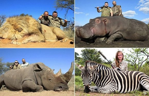 Russian surgeon makes $1m a year helping tourists hunt rare animals