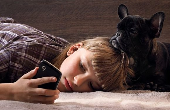 Your smartphone obsession may be making your dog sad, expert warns