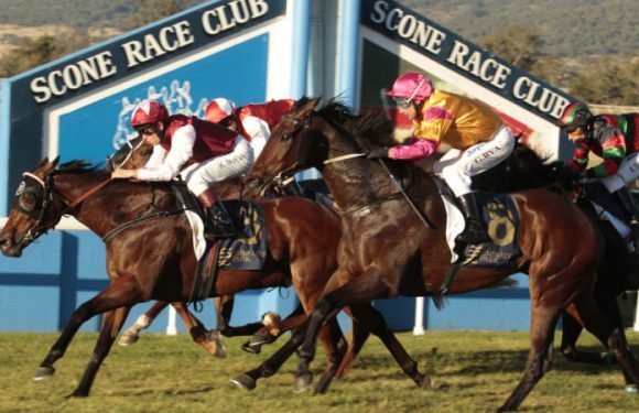 Race-by-race guide and tips for Scone on Friday