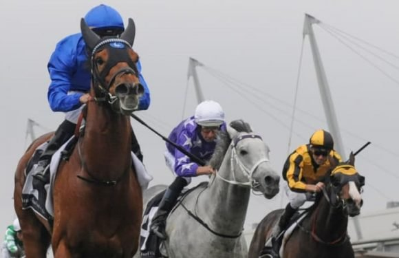 Free-running Home Of The Brave adds to Everest intrigue
