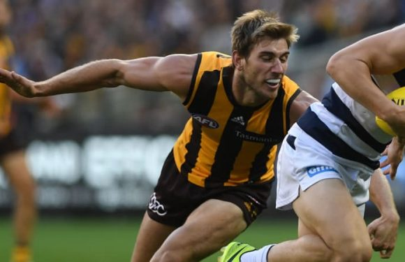 Host of Hawks put hand up to replace Stratton for Demons clash
