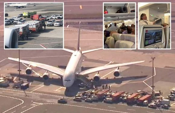 Emirates plane quarantined at JFK after '100 people suddenly fall ill with fevers and coughs' on board
