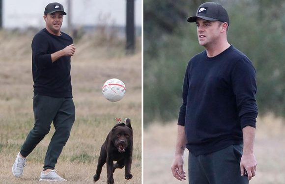 Ant McPartlin looks happy and healthy as he walks beloved dog Hurley near his home in London